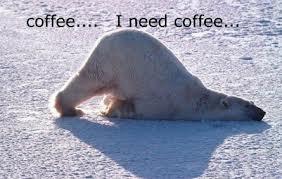 coffee polar bear